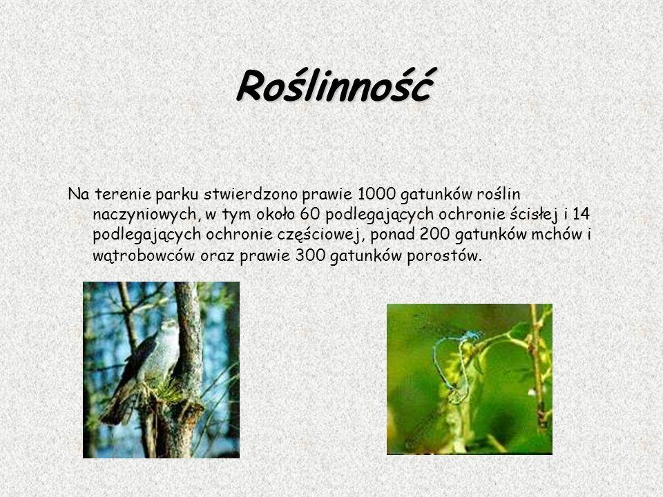 Roślinność Na terenie parku stwierdzono prawie 1000 gatunków roślin naczyniowych, w tym około 60 podlegających ochronie ścisłej i 14 podlegających och