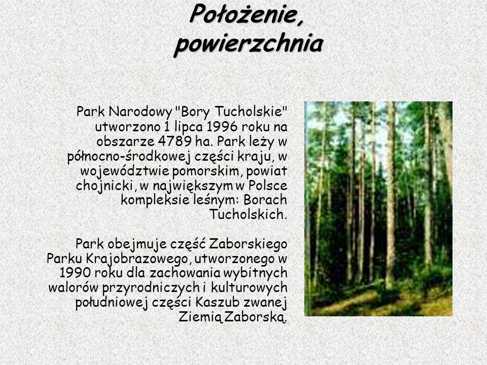Położenie, powierzchnia Park Narodowy