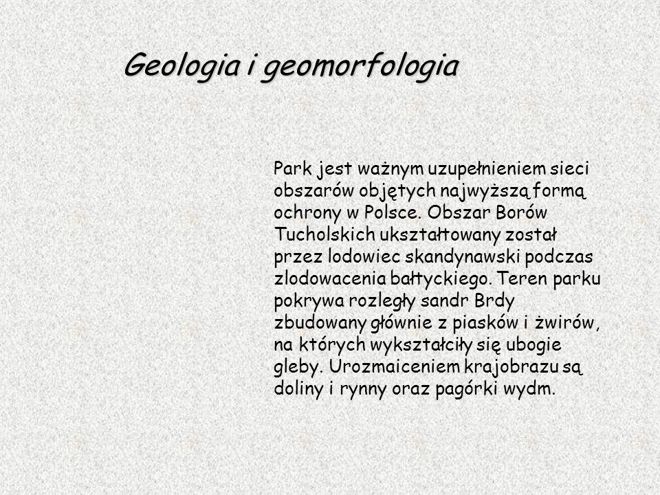 Geologia i geomorfologia Park jest ważnym uzupełnieniem sieci obszarów objętych najwyższą formą ochrony w Polsce. Obszar Borów Tucholskich ukształtowa
