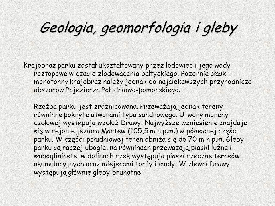 Geologia, geomorfologia i gleby Krajobraz parku został ukształtowany przez lodowiec i jego wody roztopowe w czasie zlodowacenia bałtyckiego. Pozornie