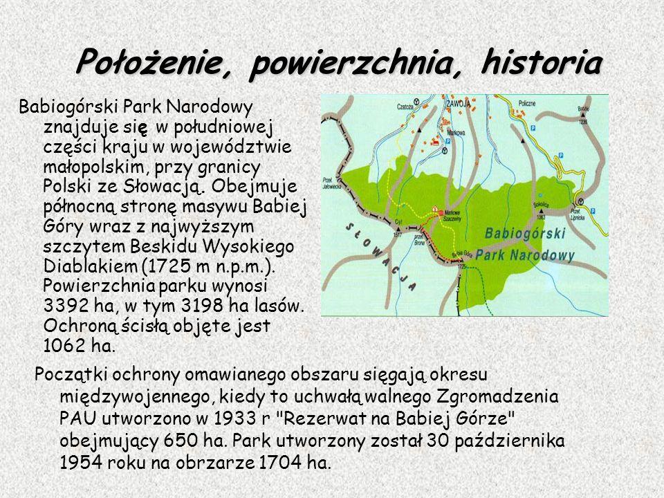 Położenie, powierzchnia, historia Początki ochrony omawianego obszaru sięgają okresu międzywojennego, kiedy to uchwałą walnego Zgromadzenia PAU utworz