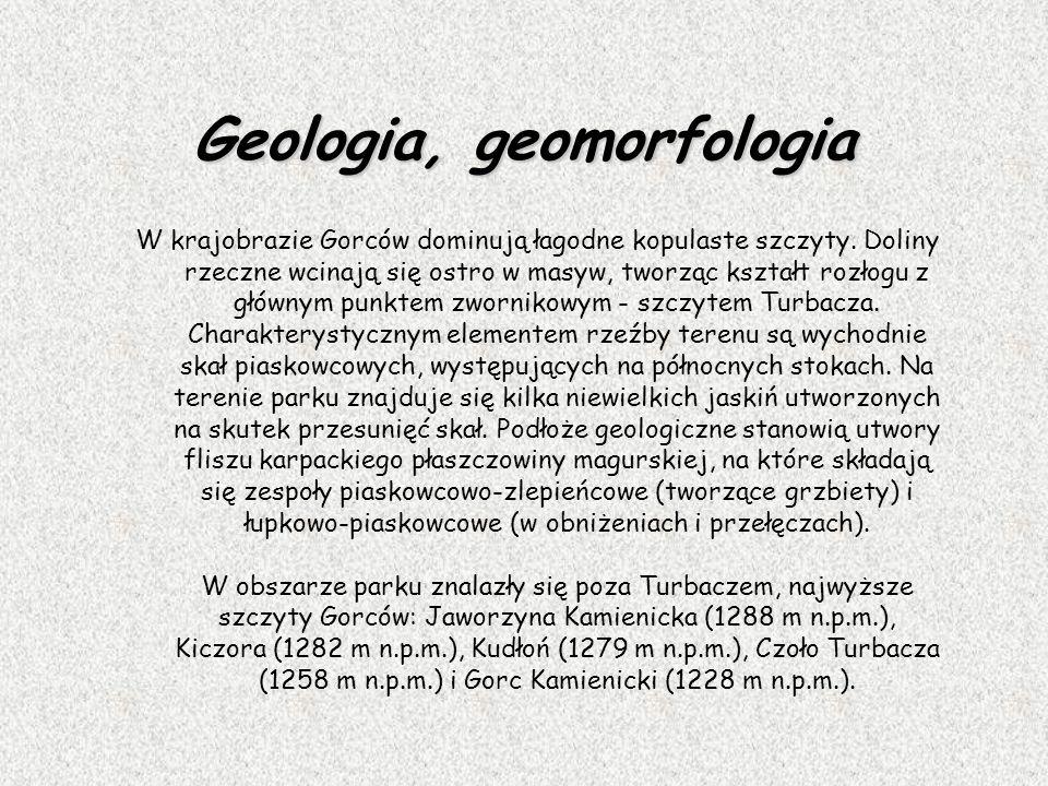 Geologia, geomorfologia W krajobrazie Gorców dominują łagodne kopulaste szczyty. Doliny rzeczne wcinają się ostro w masyw, tworząc kształt rozłogu z g