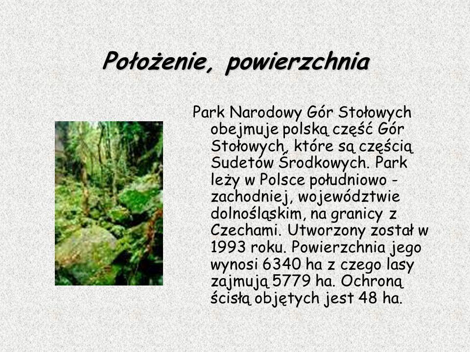 Położenie, powierzchnia Park Narodowy Gór Stołowych obejmuje polską część Gór Stołowych, które są częścią Sudetów Środkowych. Park leży w Polsce połud