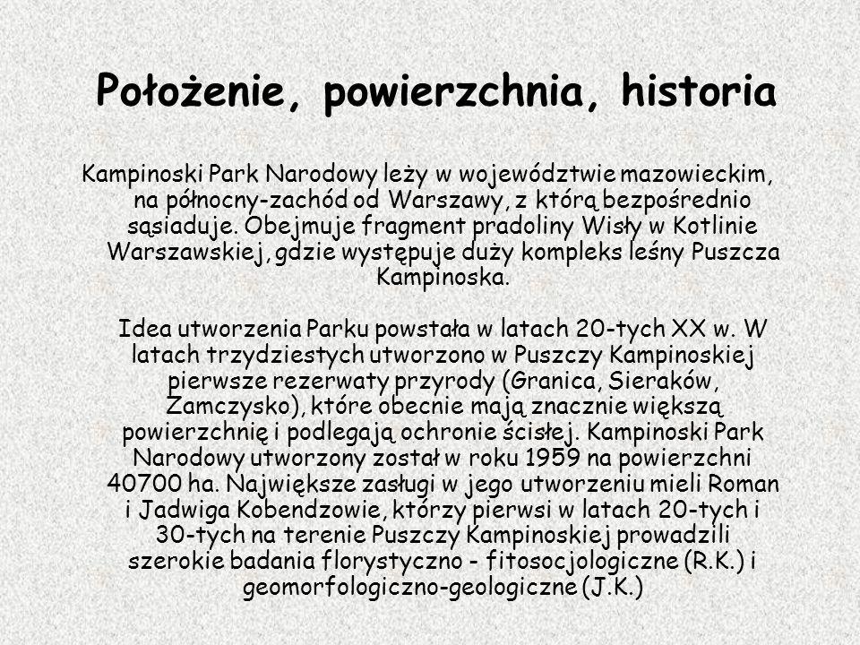 Położenie, powierzchnia, historia Kampinoski Park Narodowy leży w województwie mazowieckim, na północny-zachód od Warszawy, z którą bezpośrednio sąsia