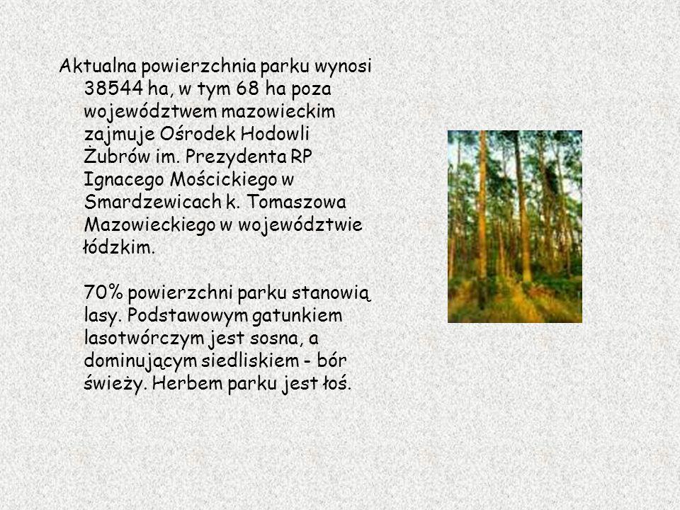 Aktualna powierzchnia parku wynosi 38544 ha, w tym 68 ha poza województwem mazowieckim zajmuje Ośrodek Hodowli Żubrów im. Prezydenta RP Ignacego Mości