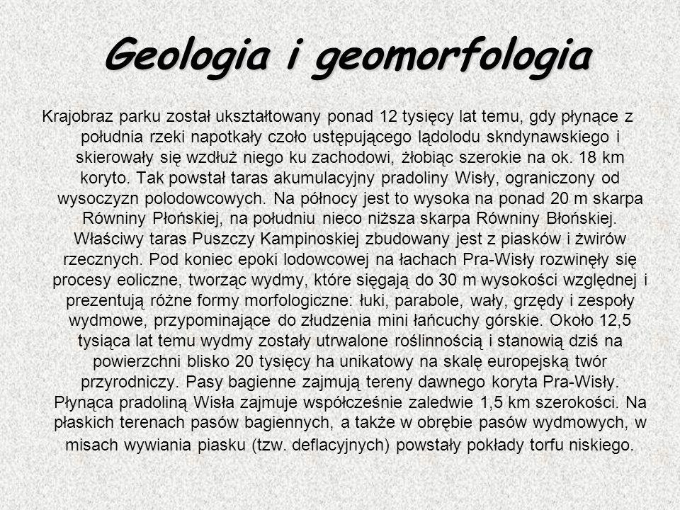 Geologia i geomorfologia Krajobraz parku został ukształtowany ponad 12 tysięcy lat temu, gdy płynące z południa rzeki napotkały czoło ustępującego ląd