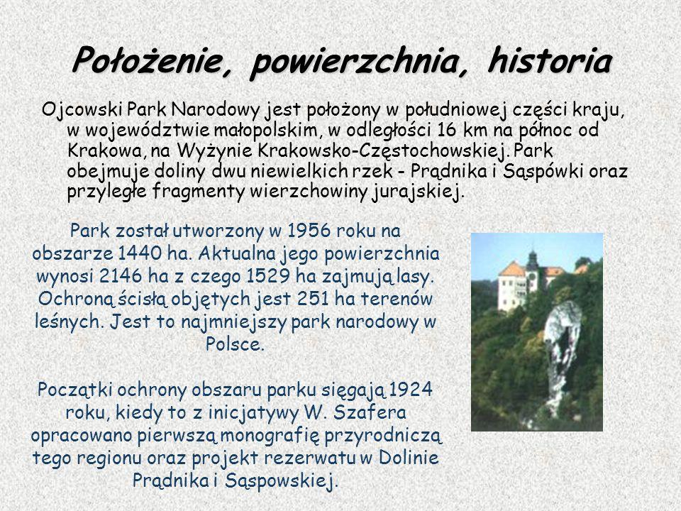 Położenie, powierzchnia, historia Ojcowski Park Narodowy jest położony w południowej części kraju, w województwie małopolskim, w odległości 16 km na p