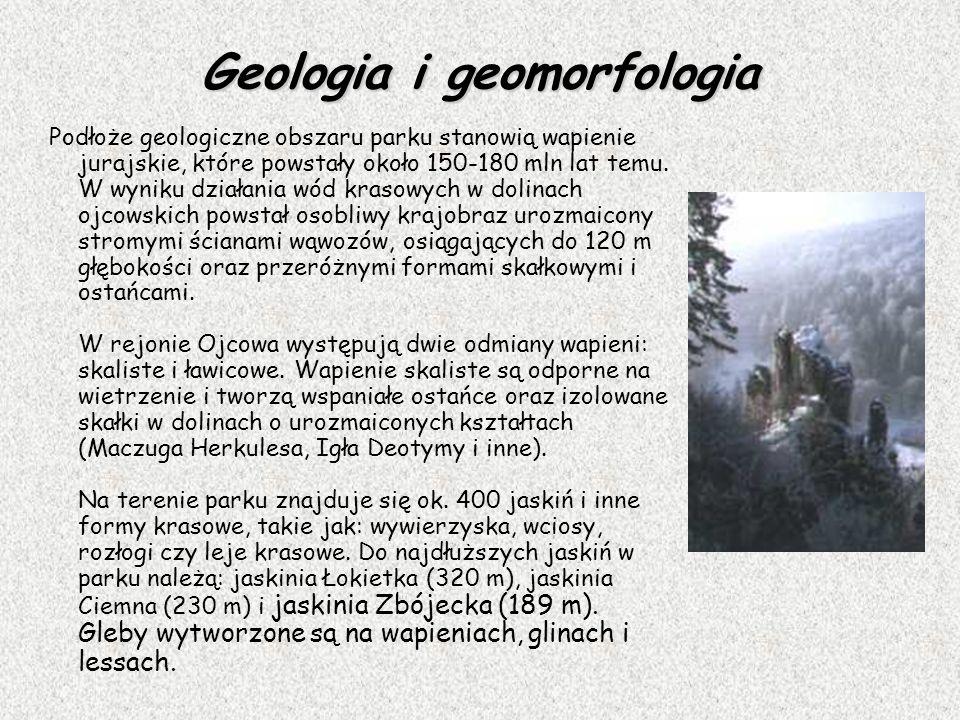 Geologia i geomorfologia Podłoże geologiczne obszaru parku stanowią wapienie jurajskie, które powstały około 150-180 mln lat temu. W wyniku działania