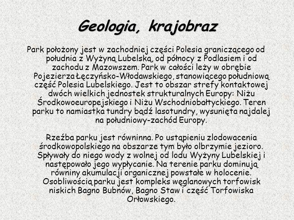 Geologia, krajobraz Park położony jest w zachodniej części Polesia graniczącego od południa z Wyżyną Lubelską, od północy z Podlasiem i od zachodu z M
