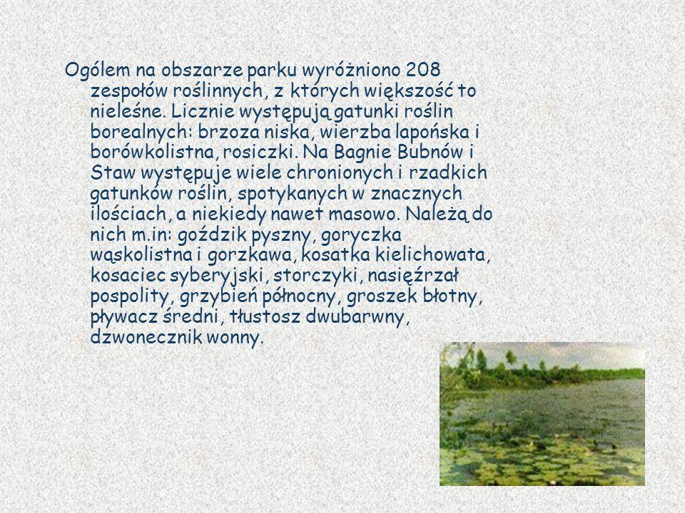 Ogólem na obszarze parku wyróżniono 208 zespołów roślinnych, z których większość to nieleśne. Licznie występują gatunki roślin borealnych: brzoza nisk
