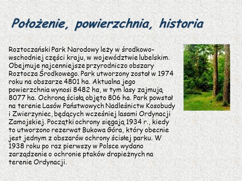 Położenie, powierzchnia, historia Roztoczański Park Narodowy leży w środkowo- wschodniej części kraju, w województwie lubelskim. Obejmuje najcenniejsz