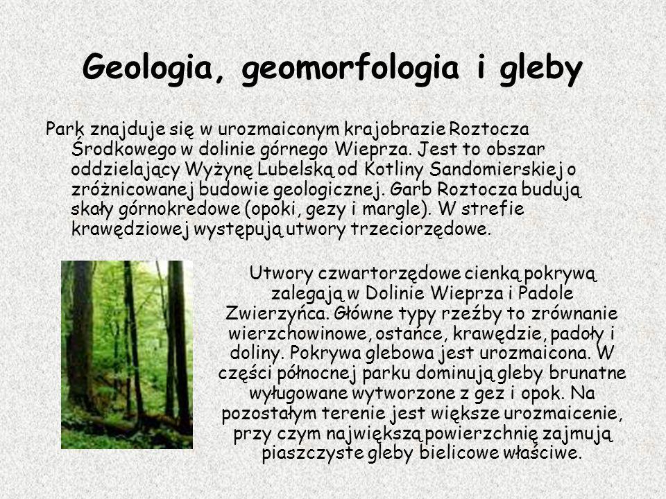 Geologia, geomorfologia i gleby Park znajduje się w urozmaiconym krajobrazie Roztocza Środkowego w dolinie górnego Wieprza. Jest to obszar oddzielając