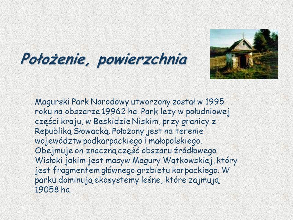 Magurski Park Narodowy utworzony został w 1995 roku na obszarze 19962 ha. Park leży w południowej części kraju, w Beskidzie Niskim, przy granicy z Rep