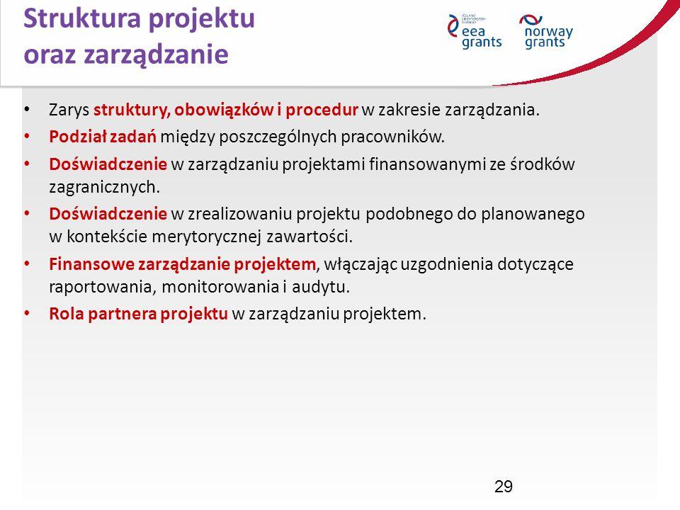 29 Zarys struktury, obowiązków i procedur w zakresie zarządzania. Podział zadań między poszczególnych pracowników. Doświadczenie w zarządzaniu projekt