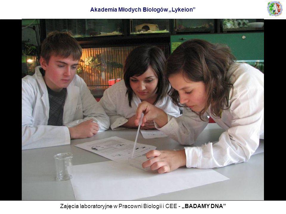 Zajęcia laboratoryjne w Pracowni Biologii i CEE - BADAMY DNA
