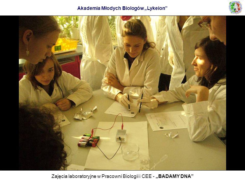 Zajęcia laboratoryjne w Pracowni Biologii i CEE - BADAMY DNA Akademia Młodych Biologów Lykeion