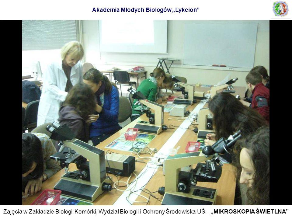 Zajęcia w Zakładzie Biologii Komórki, Wydział Biologii i Ochrony Środowiska UŚ – MIKROSKOPIA ŚWIETLNA Akademia Młodych Biologów Lykeion