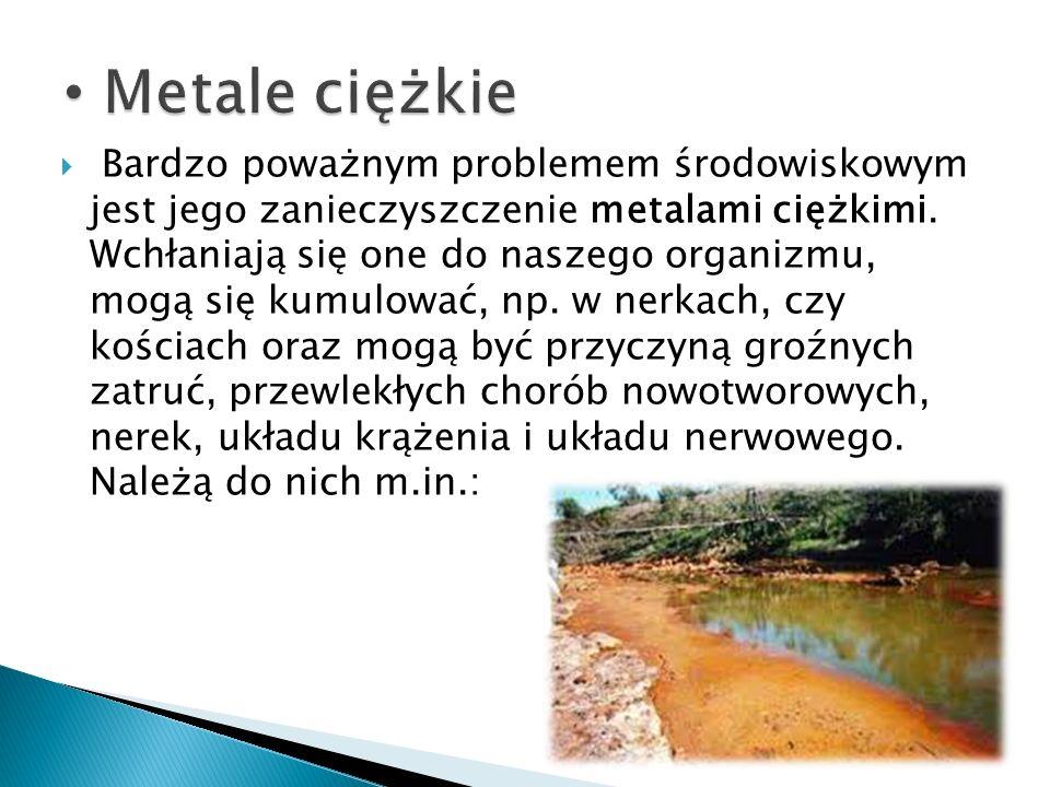 Bardzo poważnym problemem środowiskowym jest jego zanieczyszczenie metalami ciężkimi. Wchłaniają się one do naszego organizmu, mogą się kumulować, np.