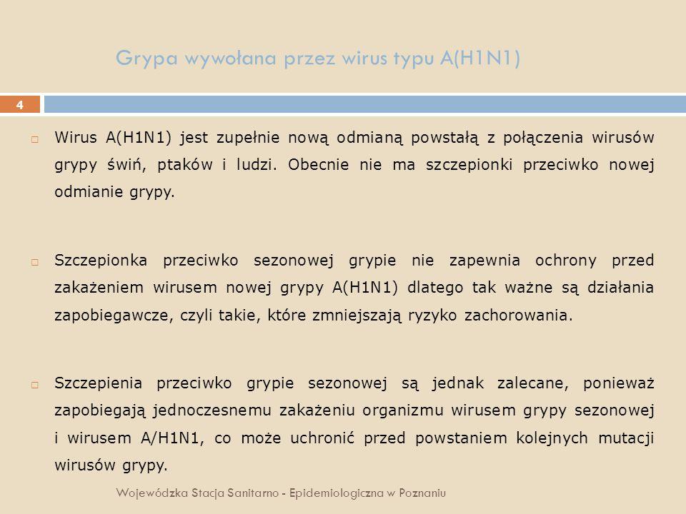 15 Grypa wywołana przez wirus typu A(H1N1) Wojewódzka Stacja Sanitarno - Epidemiologiczna w Poznaniu Informacja dla ucznia