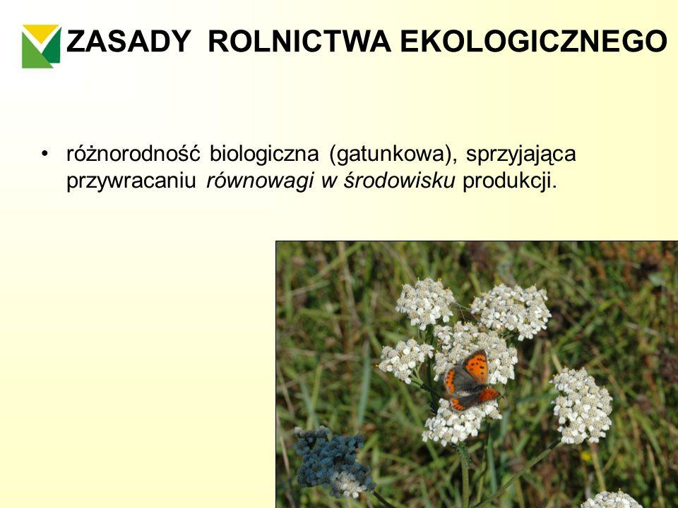ZASADY ROLNICTWA EKOLOGICZNEGO różnorodność biologiczna (gatunkowa), sprzyjająca przywracaniu równowagi w środowisku produkcji.