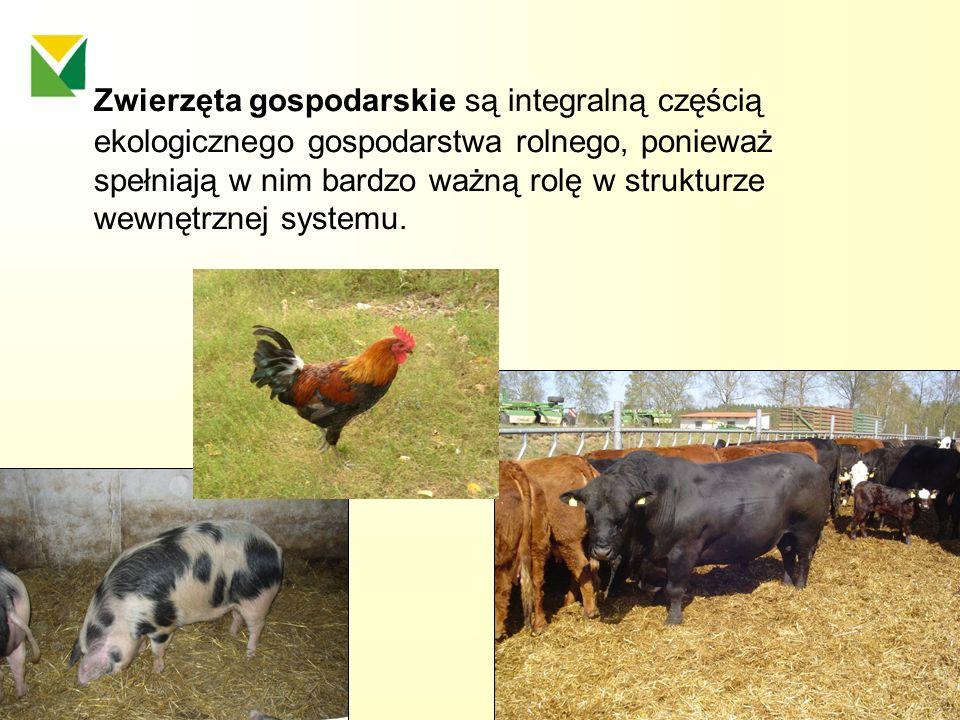 Zwierzęta gospodarskie są integralną częścią ekologicznego gospodarstwa rolnego, ponieważ spełniają w nim bardzo ważną rolę w strukturze wewnętrznej s