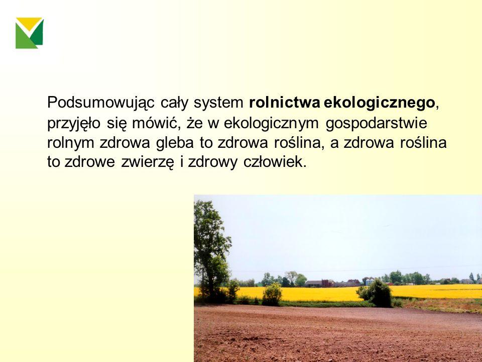 Podsumowując cały system rolnictwa ekologicznego, przyjęło się mówić, że w ekologicznym gospodarstwie rolnym zdrowa gleba to zdrowa roślina, a zdrowa