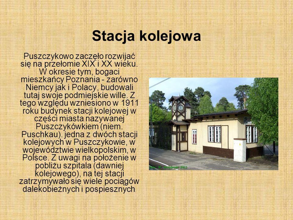 Stacja kolejowa Puszczykowo zaczęło rozwijać się na przełomie XIX i XX wieku. W okresie tym, bogaci mieszkańcy Poznania - zarówno Niemcy jak i Polacy,