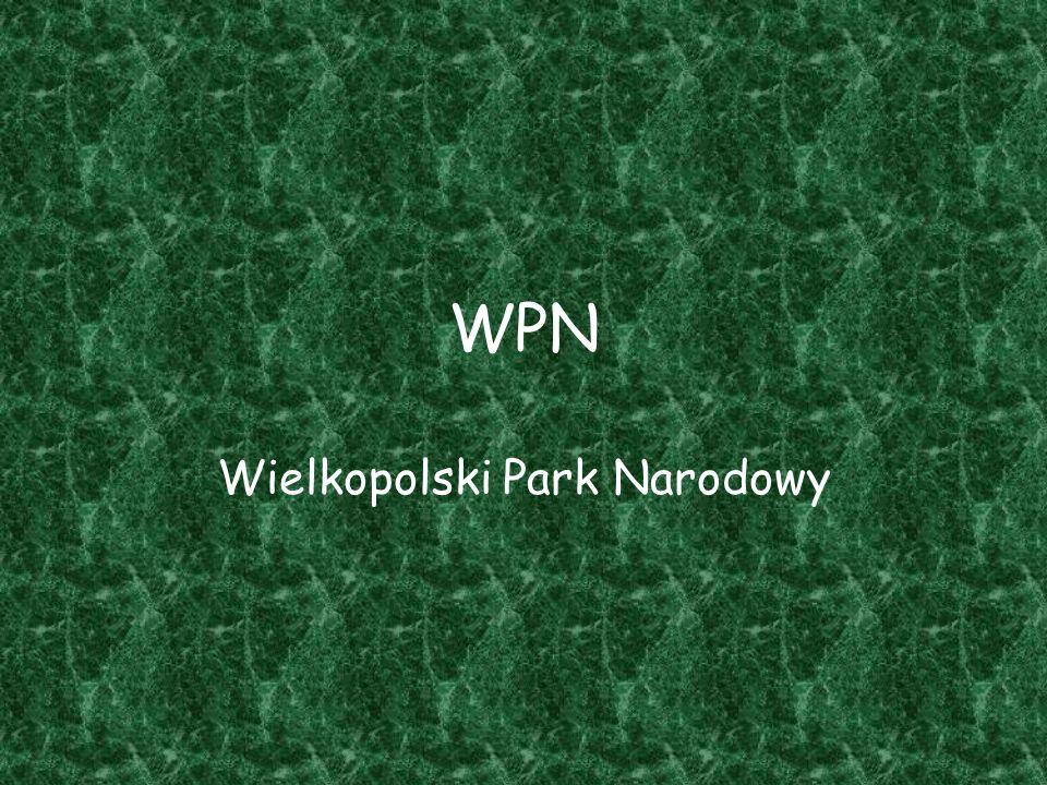 WPN Wielkopolski Park Narodowy