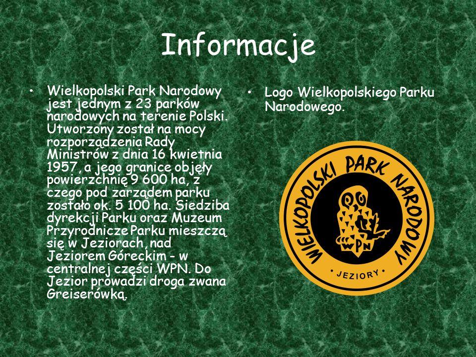 Informacje Wielkopolski Park Narodowy jest jednym z 23 parków narodowych na terenie Polski. Utworzony został na mocy rozporządzenia Rady Ministrów z d