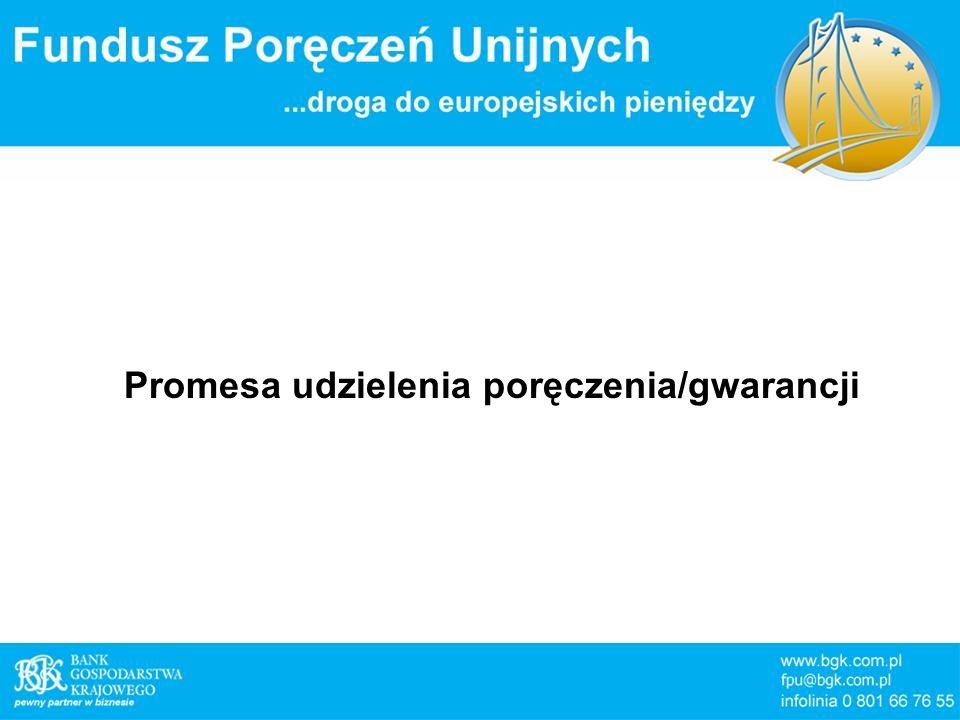 Promesa udzielenia poręczenia/gwarancji