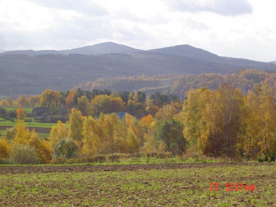 Listopad 16 XI miała miejsce wycieczka do Suchej Beskidzkiej.Tam na zamku uczniowie obejrzeli wystawę Marka Łasaka Beskidzkie strzechy.