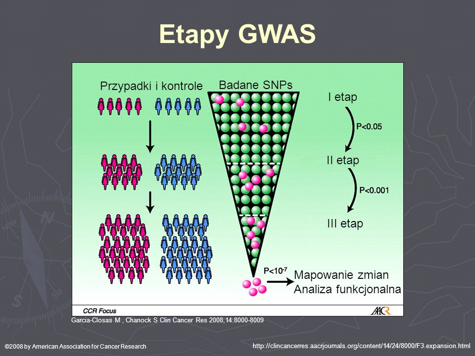 Etapy GWAS Garcia-Closas M, Chanock S Clin Cancer Res 2008;14:8000-8009 ©2008 by American Association for Cancer Research Przypadki i kontrole Badane