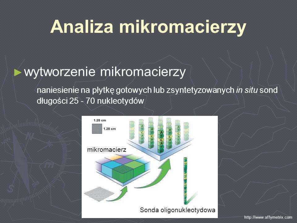 Analiza mikromacierzy wytworzenie mikromacierzy naniesienie na płytkę gotowych lub zsyntetyzowanych in situ sond długości 25 - 70 nukleotydów http://w
