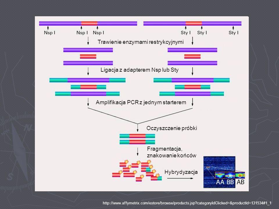 http://www.affymetrix.com/estore/browse/products.jsp?categoryIdClicked=&productId=131534#1_1 Trawienie enzymami restrykcyjnymi Ligacja z adapterem Nsp