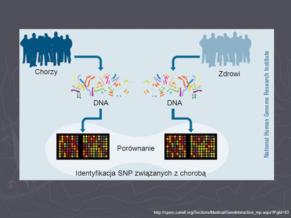 Chorzy Zdrowi DNA Porównanie Identyfikacja SNP związanych z chorobą http://cpmc.coriell.org/Sections/Medical/GeneInteraction_mp.aspx?PgId=93