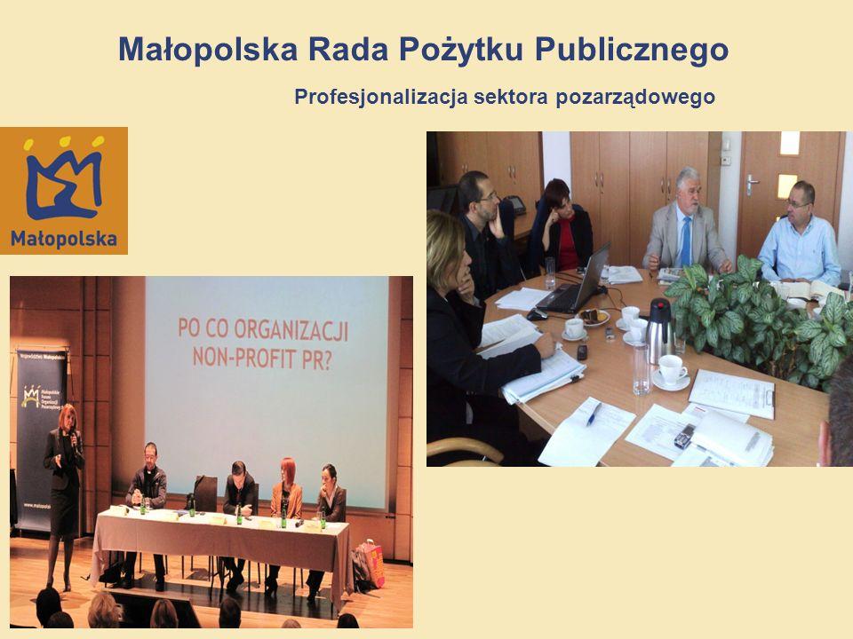 13/12 Małopolska Rada Pożytku Publicznego Profesjonalizacja sektora pozarządowego