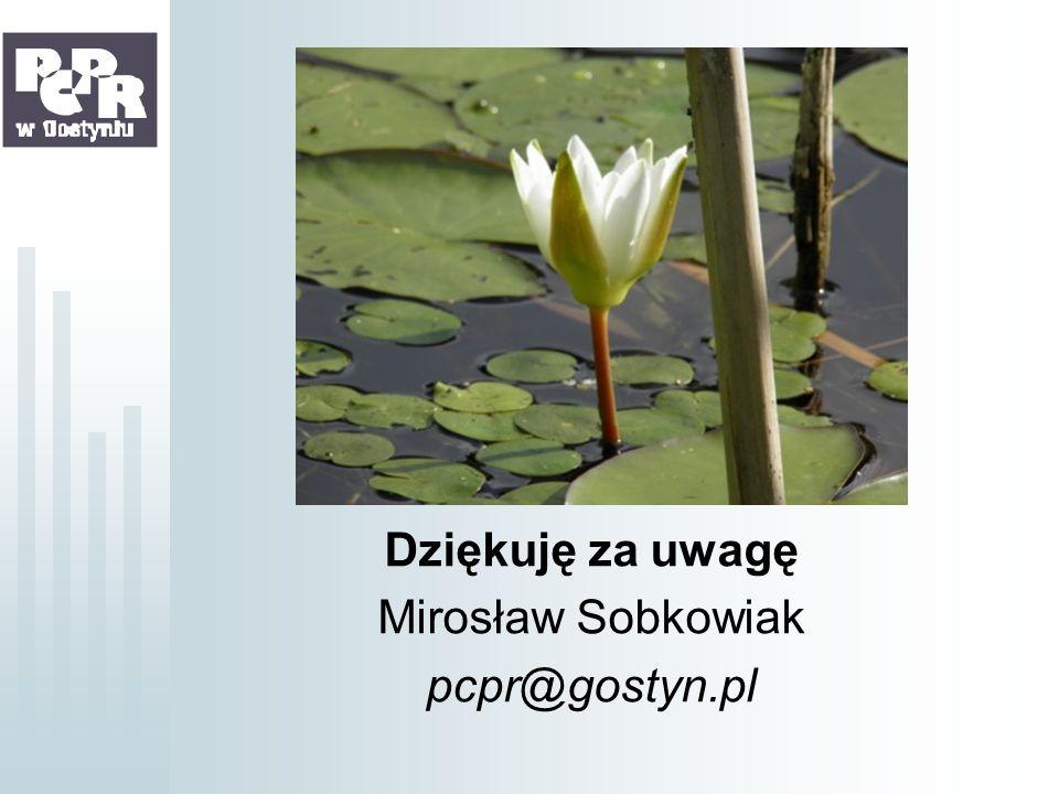 Dziękuję za uwagę Mirosław Sobkowiak pcpr@gostyn.pl