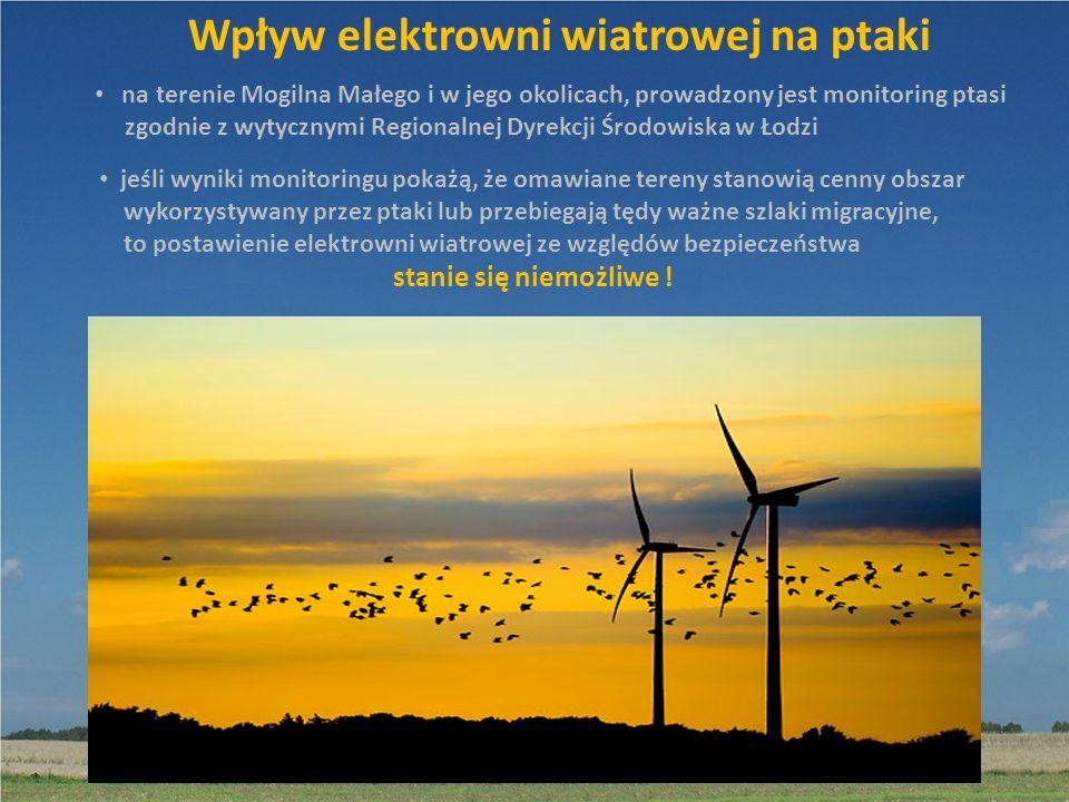 Wpływ elektrowni wiatrowej na ptaki na terenie Mogilna Małego i w jego okolicach, prowadzony jest monitoring ptasi zgodnie z wytycznymi Regionalnej Dy