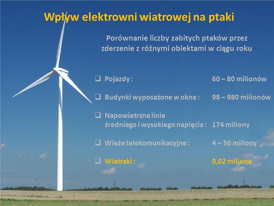 Wpływ elektrowni wiatrowej na ptaki Porównanie liczby zabitych ptaków przez zderzenie z różnymi obiektami w ciągu roku Pojazdy : Budynki wyposażone w