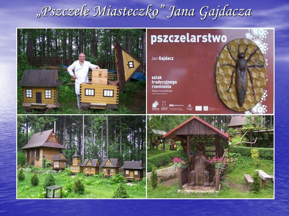 Pszczele Miasteczko Jana Gajdacza