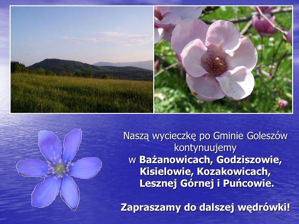 Naszą wycieczkę po Gminie Goleszów kontynuujemy w Bażanowicach, Godziszowie, Kisielowie, Kozakowicach, Lesznej Górnej i Puńcowie. Zapraszamy do dalsze