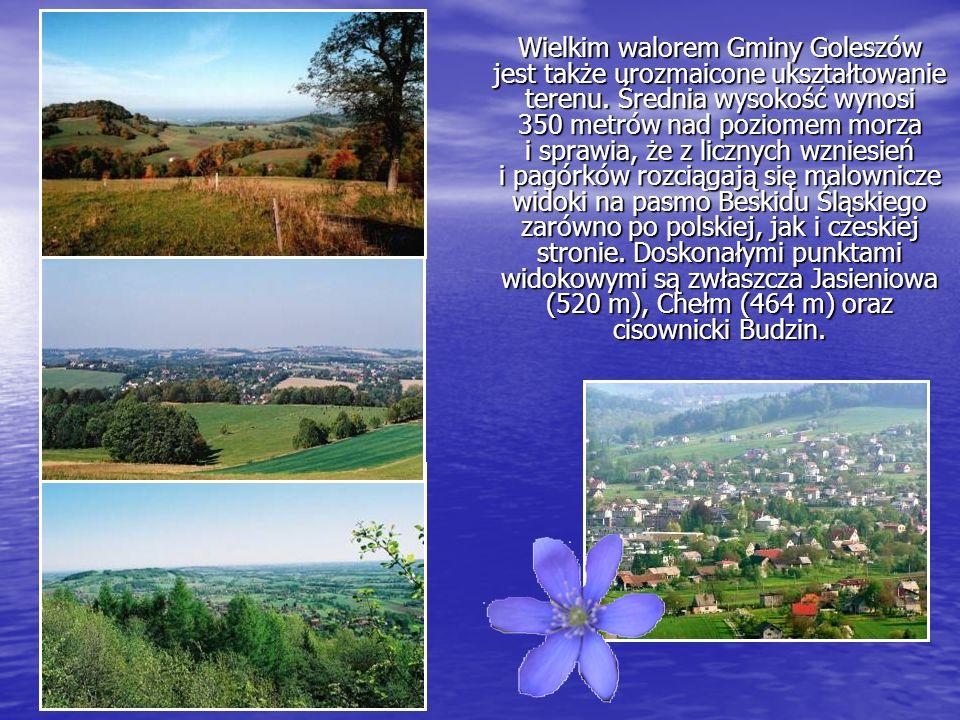 Gminę Goleszów cechuje również duża ilość i różnorodność urokliwych zakątków znajdujących się z dala od zgiełku wielkich miast.