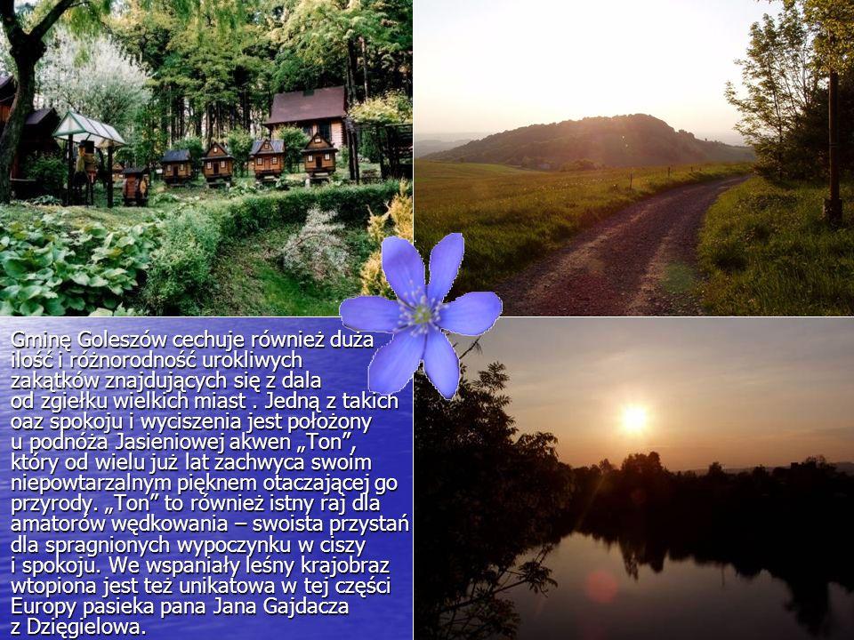 Gminę Goleszów cechuje również duża ilość i różnorodność urokliwych zakątków znajdujących się z dala od zgiełku wielkich miast. Jedną z takich oaz spo