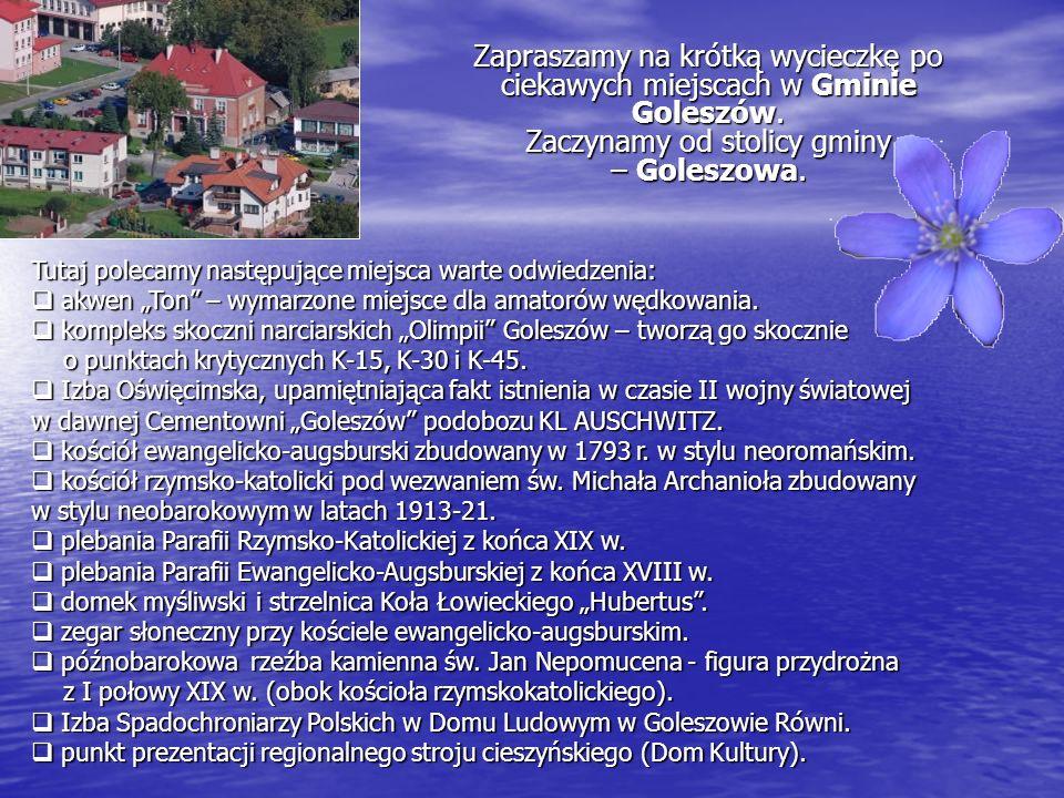 Zapraszamy na krótką wycieczkę po ciekawych miejscach w Gminie Goleszów. Zaczynamy od stolicy gminy – Goleszowa. Tutaj polecamy następujące miejsca wa