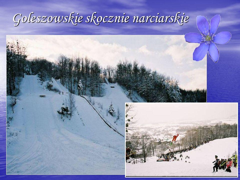 Goleszowskie skocznie narciarskie