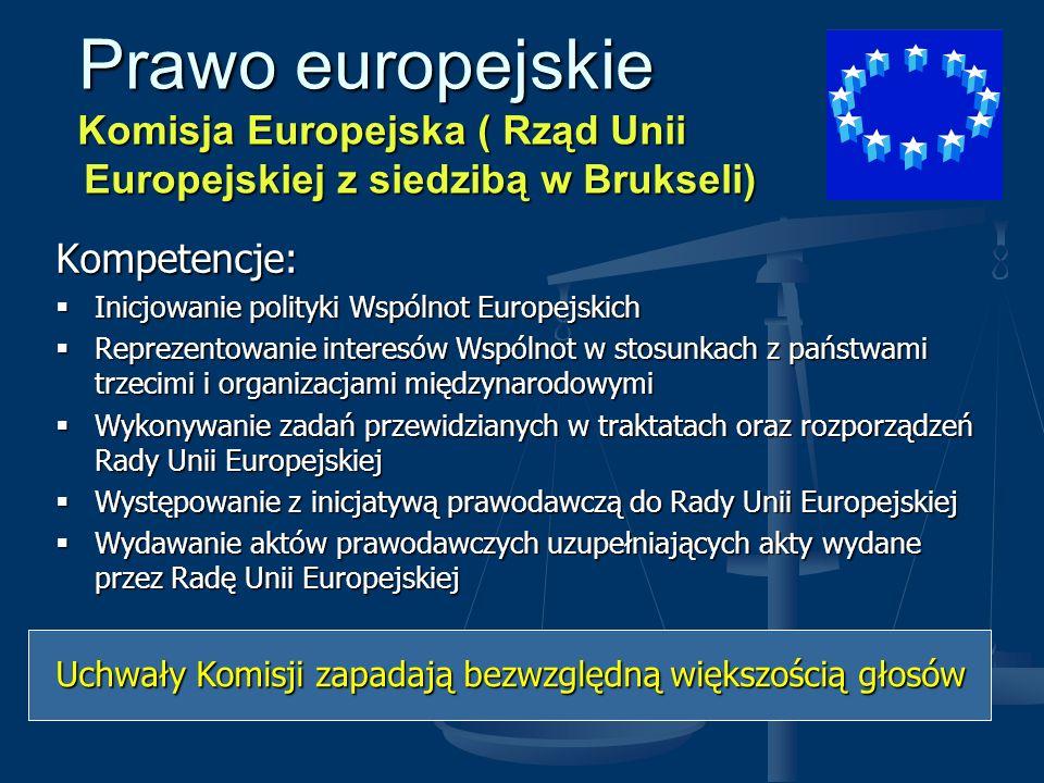 Prawo europejskie Komisja Europejska ( Rząd Unii Europejskiej z siedzibą w Brukseli) Prawo europejskie Komisja Europejska ( Rząd Unii Europejskiej z s