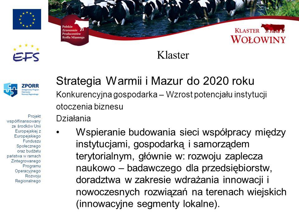 Projekt współfinansowany ze środków Unii Europejskiej z Europejskiego Funduszu Społecznego oraz budżetu państwa w ramach Zintegrowanego Programu Opera
