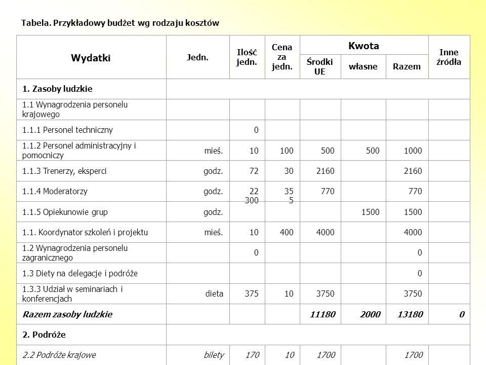 Tabela. Przykładowy budżet wg rodzaju kosztów