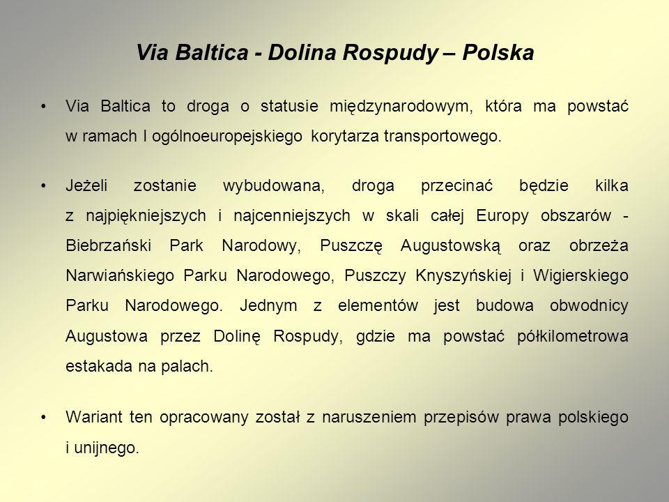 Via Baltica - Dolina Rospudy – Polska Via Baltica to droga o statusie międzynarodowym, która ma powstać w ramach I ogólnoeuropejskiego korytarza trans
