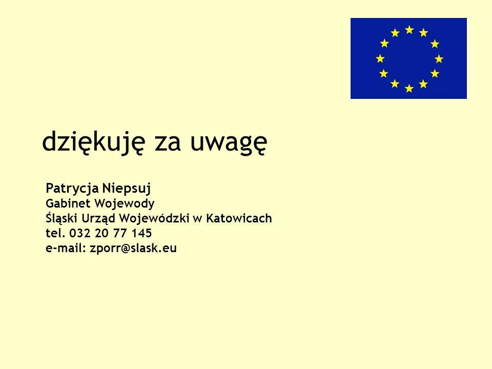 dziękuję za uwagę Patrycja Niepsuj Gabinet Wojewody Śląski Urząd Wojewódzki w Katowicach tel.